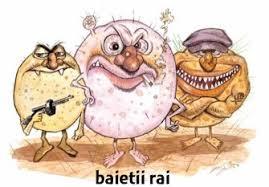Influenta intestinala