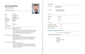 hier een gratis cv voorbeeld callcenter medewerkers je kunt het callcenter medewerker voorbeeld cv in pdf vorm op deze manier kun je het gebruiken als cv voorbeeld voor je eigen curriuclum vitae