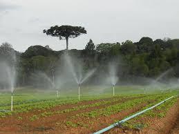 Resultado de imagem para irrigacao
