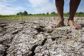 Resultado de imagem para El Niño
