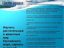 Реферат На Тему Каспийское Море Скачать Реферат На Тему Каспийское Море