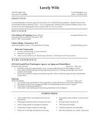 Shidduch Resume Fascinating Shidduch Resume Example Foodcityme