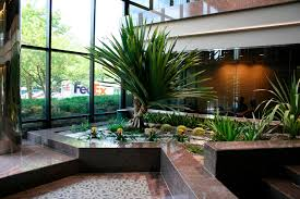 interior landscaping office. 10 Beautiful Interior Landscapes Award Winning Contemporary Concrete Planters And Sculpture By Landscaping Office