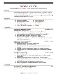 Attractive Team Leader Resume Example Crest - Resume Ideas For ...
