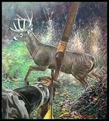 cool hunting backgrounds. Deer Hunting Wallpaper Search Results For Traditional Bow Adorable Wallpapers Cool Backgrounds .