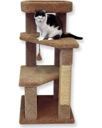 cat trees for sale. Beatrise Pet Products 46\ Cat Trees For Sale A