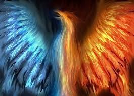 Image result for picture of a phoenix
