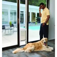 pet doors petsafe freedom patio panel pet door doggie door screen door