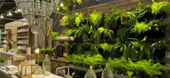 Plant Interior Design Awesome Garden Wall Ideas When Plants Become Interior Decor VIDEO