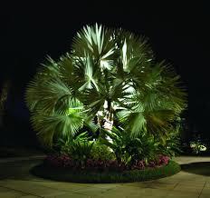 tropical outdoor lighting. Facebook Pinterest Tropical Outdoor Lighting O