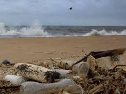 2020-10-19 Gulf Stream, FL Daily News | News Break