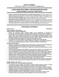 Resume For Non Profit Job Profit Professional Resume Non Samples Exec Sevte 93