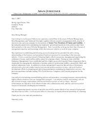 Resume Example Insurance Executive Example Of A Cover Letter