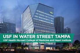 usf health news usf health news usf health news usf in water street tampa