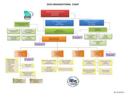 Dhs Org Chart 34 Printable Dhs Organizational Chart Forms And Templates