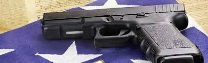 gun control essay gun control pros and cons