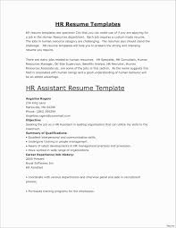 Best Resumes Examples Delectable Very Good Resume Examples Save Resumes Examples Elegant Best How Can