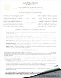Executive Resume Templates Magnificent Resume Templates Of A Director Delijuice