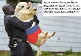 """Россия заявила протест США после """"срыва"""" флагов с дипломатических объектов в Сан-Франциско - Цензор.НЕТ 5207"""