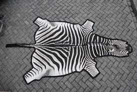 zebra skin zebra hides zebra rug
