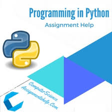 plag our professional writers will guide you throughout your programming in python assignment help