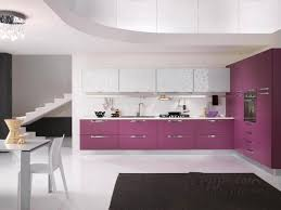 lovable adorable modern kitchen deep purple cabinets contemporary kitchens design with purple kitchen cabinet storag and
