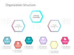 Project Team Structure Chart Organizational Structure Flow Charts