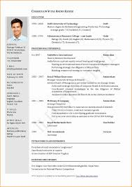 One Page Resume Format Doc Elegant E Page Resume Format