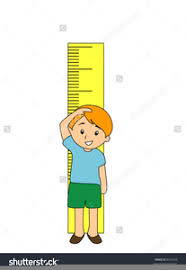 Height Chart Clipart Free Images At Clker Com Vector