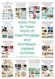 Montessori Monday - Free Ladybug Printables and Montessori ...
