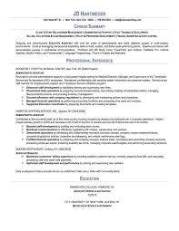 Charming Resume Summary Examples
