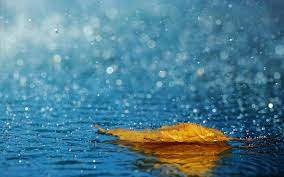Rainfall Wallpapers - Top Free Rainfall ...