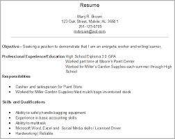 Gallery Of First Job Resume Examples Resume Badak Job Resume