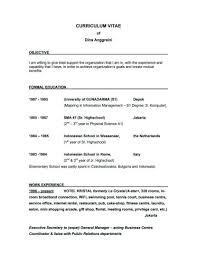 Basic Resume Objectives Therpgmovie