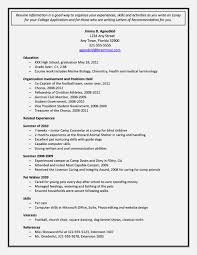 Amazing Sample College Application Resume Template For Free High