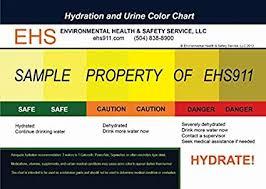 Amazon Com Heat Stress Hydration And Urine Color