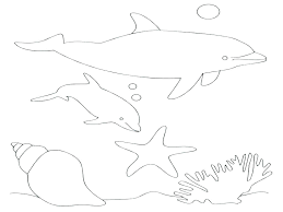 Dolphin Colouring 488websitedesigncom