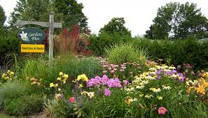 Small Picture Perennial Flower Garden Designs Home Furniture Design
