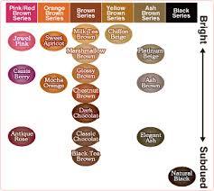 Blovetbeauty Liese Bubble Hair Color Platinum Beige Review