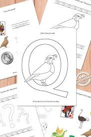 Letter Q Worksheets Free Kids Printable | Worksheets, Letter ...