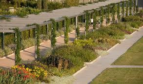 beautiful gardens in houston tx