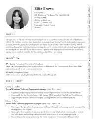 International Format Resume Resume Tremendous Great Cv Templates Free Nice Download