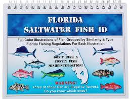 Florida Saltwater Fishing Regulations Chart Florida Saltwater Fish Identification Book