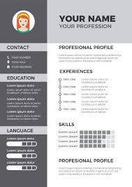 Resumes Classic Professional Premium Resumes