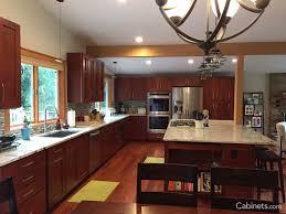 Mocha Shaker Kitchen Cabinets Shaker Kitchen Cabinets Malibu White Shaker Kitchen Cabinets Rta