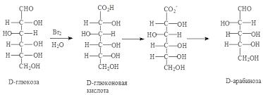 Химия Олигосахариды и полисахариды Реферат Учил Нет   собой свободнорадикальное декарбокислирование соли гликоновой кислоты в результате которого углеродная цепь альдозы укорачивается на один атом