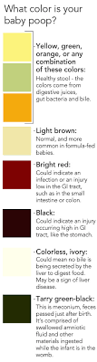 Newborn Stool Color Chart Why Is My Babys Poop This Color Pbs Newshour