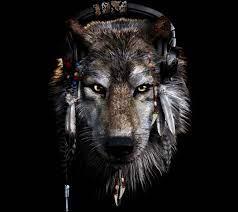 wolf tapete hd - 2160x1920 - WallpaperTip