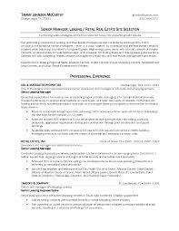 Amusing Real Estate Agent Resume Entry Level For Real Estate Sales