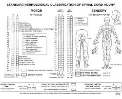 Spinal Cord Injury Chart Standard Neurological Classification Of Spinal Cord Injury